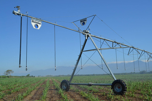 Authorised Reinke Pivot Dealer Western Australia